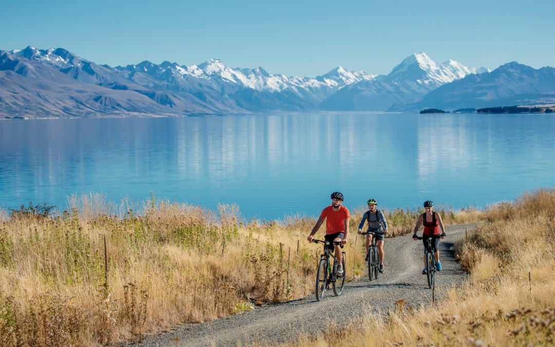 Top 4 New Zealand Cycle Trails to Ride this Summer